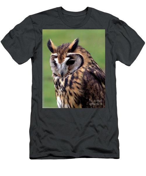 Eurasian Striped  Owl Men's T-Shirt (Slim Fit) by Stephen Melia