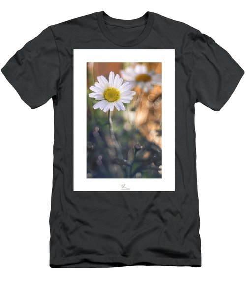 Evening Daisy Men's T-Shirt (Athletic Fit)