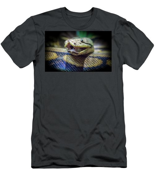 Evil In The Garden Men's T-Shirt (Athletic Fit)