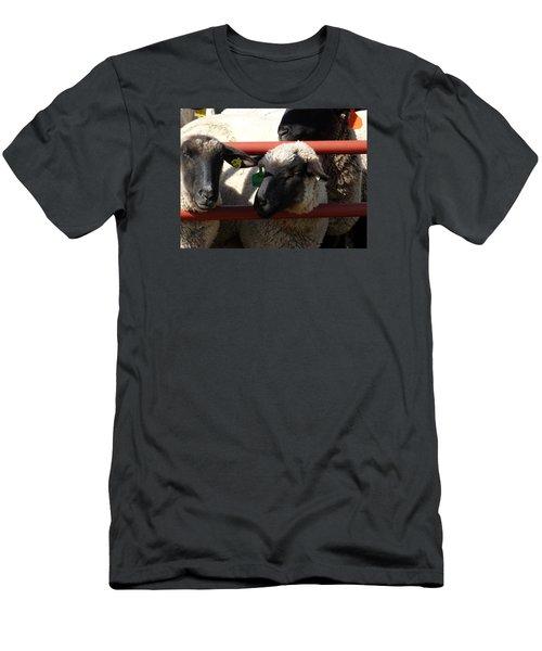 Ewe Gate Men's T-Shirt (Slim Fit) by J L Zarek