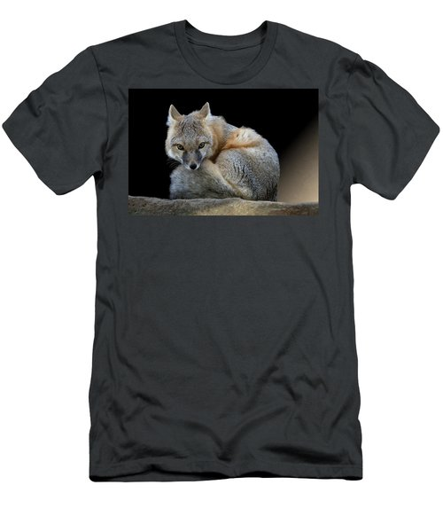 Eyes Of The Fox Men's T-Shirt (Athletic Fit)