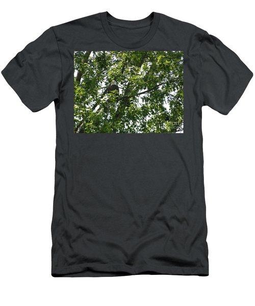 Face The Eagle Men's T-Shirt (Athletic Fit)