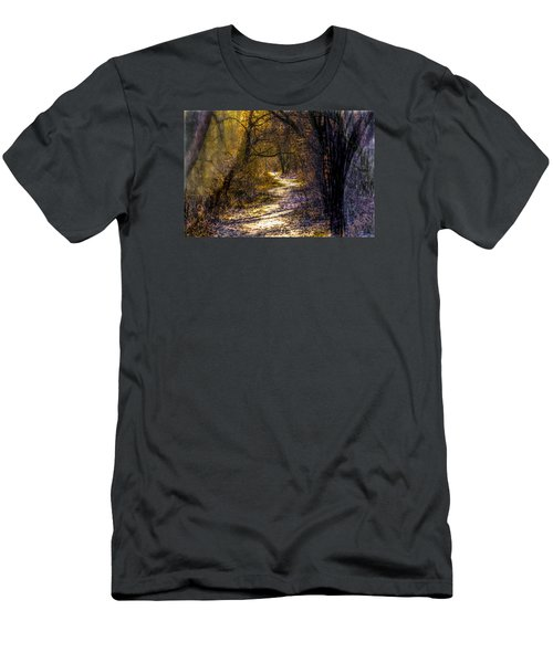 Fairy Woods Artistic  Men's T-Shirt (Slim Fit) by Leif Sohlman