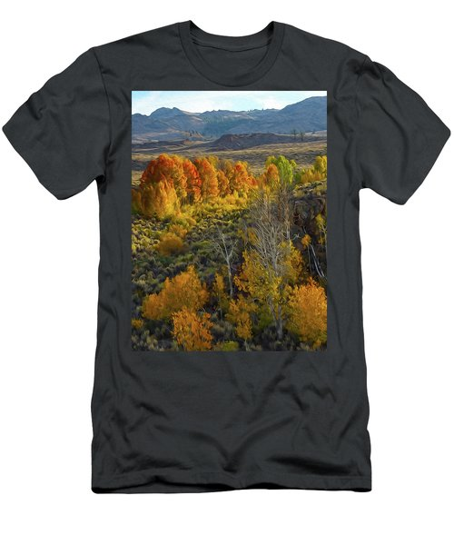 Fall Colors At Aspen Canyon Men's T-Shirt (Athletic Fit)
