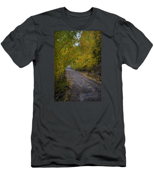 Fall Colors On Engineer Pass Men's T-Shirt (Slim Fit) by Michael J Bauer
