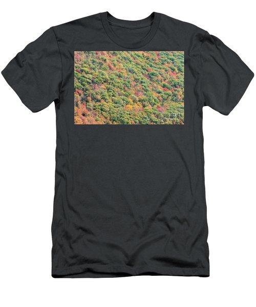 Fall Foliage Men's T-Shirt (Athletic Fit)