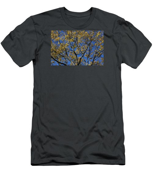 Fall Splendor And Glory Men's T-Shirt (Slim Fit) by Deborah  Crew-Johnson
