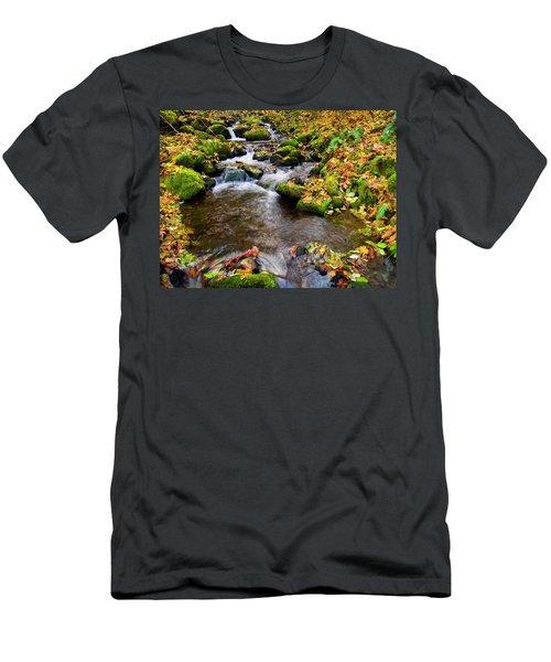Fall Splendor Men's T-Shirt (Athletic Fit)