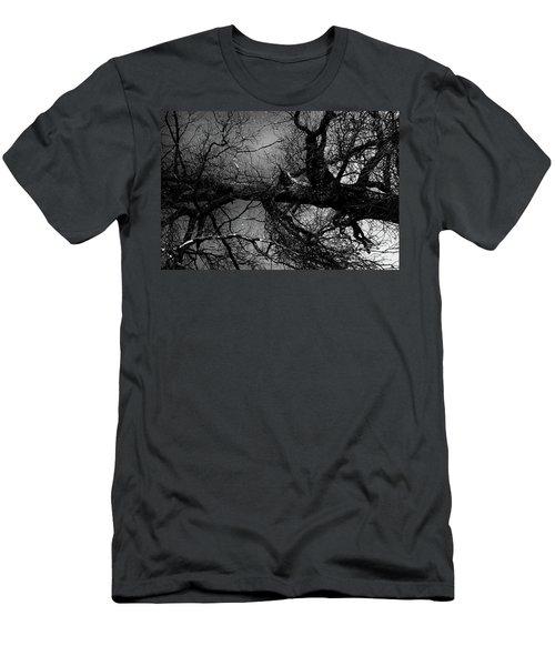Fallen Dark Wood Forest Men's T-Shirt (Athletic Fit)