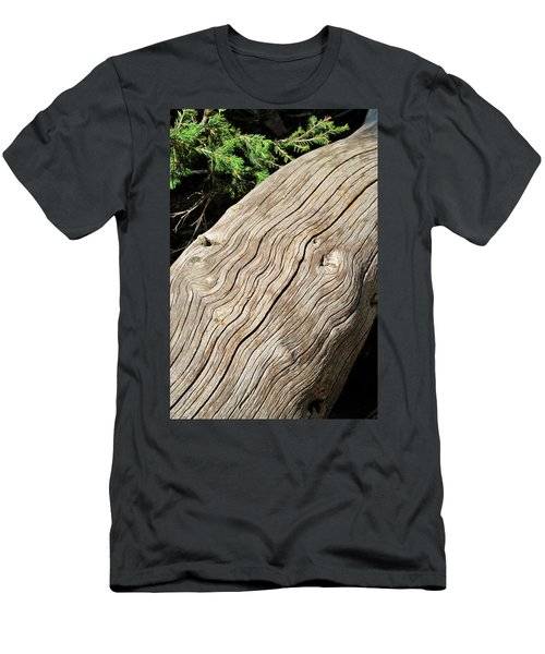Men's T-Shirt (Athletic Fit) featuring the photograph Fallen Fir by Ron Cline