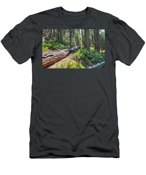 Fallen Tree- Men's T-Shirt (Athletic Fit)