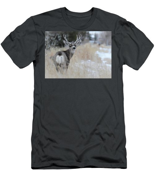 Father Deer Men's T-Shirt (Athletic Fit)