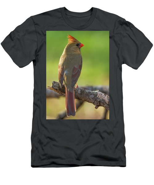Men's T-Shirt (Athletic Fit) featuring the photograph Female Cardinal by David Waldrop