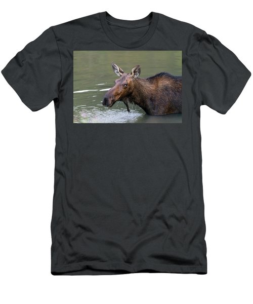Men's T-Shirt (Athletic Fit) featuring the photograph Female Moose Head by James BO Insogna