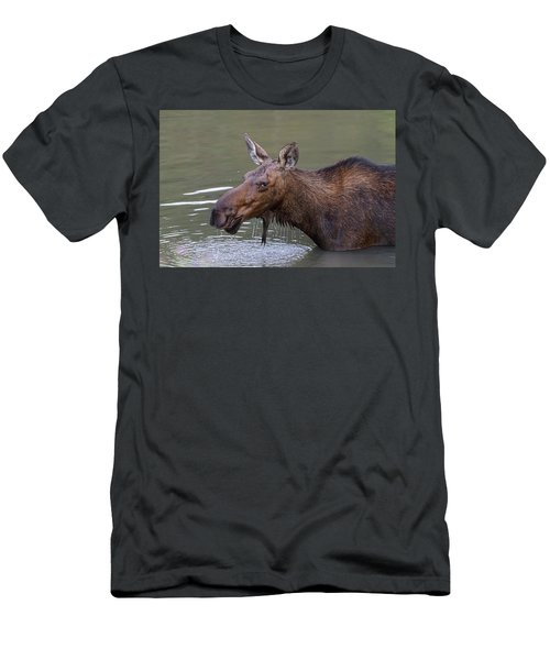 Men's T-Shirt (Athletic Fit) featuring the photograph Female Moose Head Shot by James BO Insogna