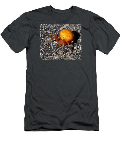 Female Orb Weaver Men's T-Shirt (Athletic Fit)
