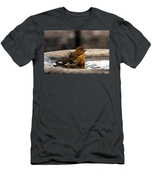 Female Summer Tanager In Bird Bath Men's T-Shirt (Athletic Fit)