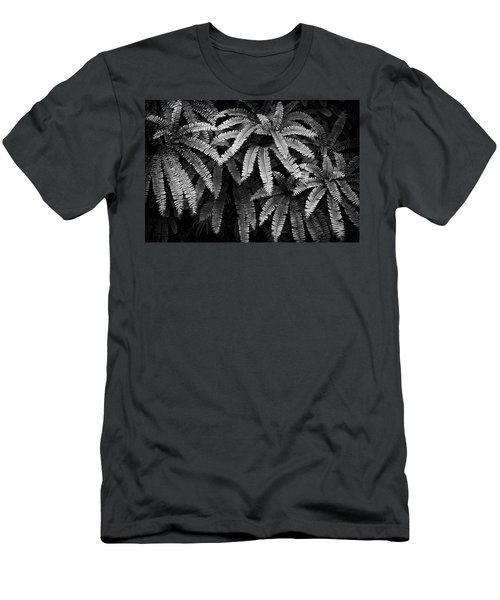 Fern And Shadow Men's T-Shirt (Athletic Fit)