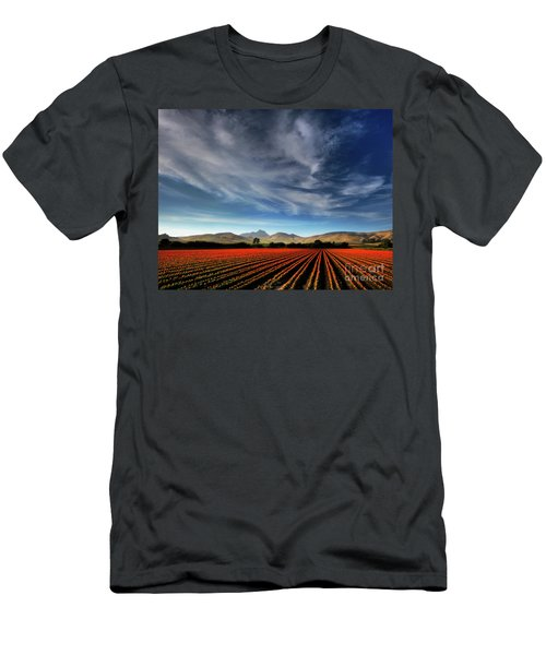 Field Of Color Men's T-Shirt (Athletic Fit)