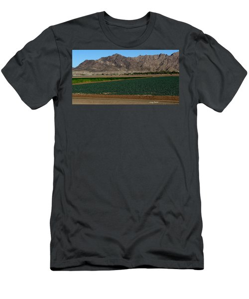 Fields Of Yuma Men's T-Shirt (Athletic Fit)
