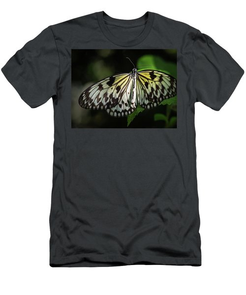 Final Metamorphosis Men's T-Shirt (Athletic Fit)