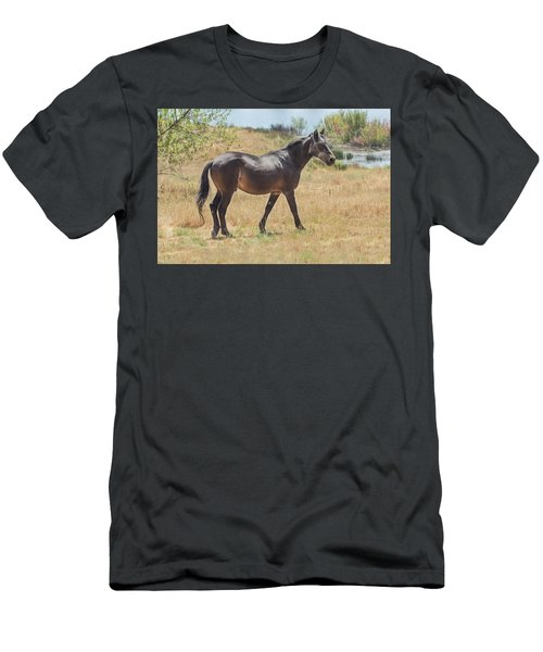 Finnon Lake Horse Men's T-Shirt (Athletic Fit)