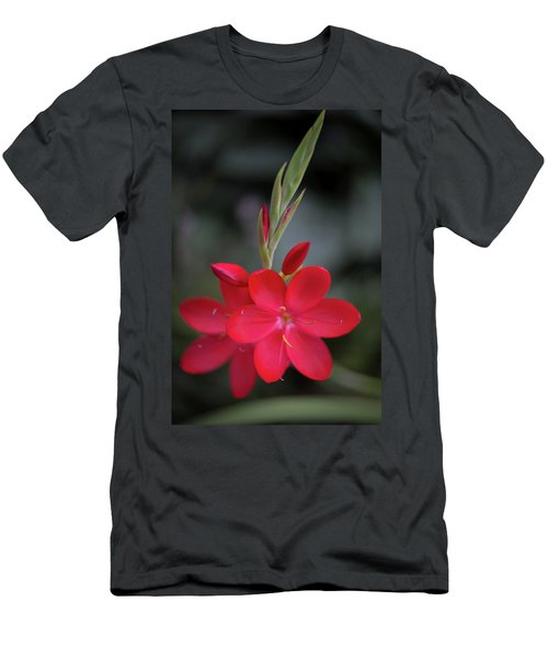 Fire Lily 2 Men's T-Shirt (Athletic Fit)