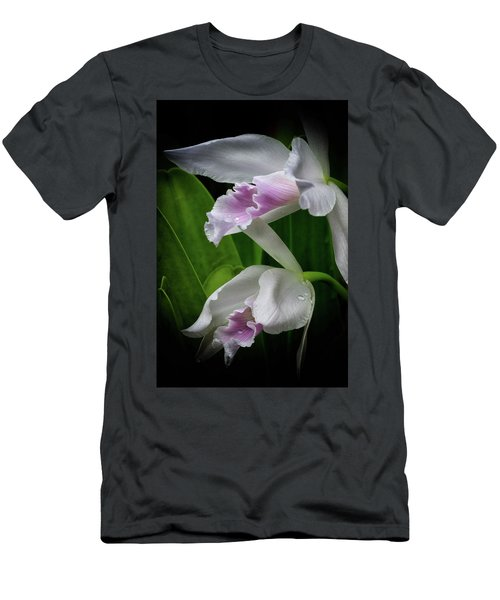 First Orchid At The Conservatory Of Flowers Men's T-Shirt (Athletic Fit)