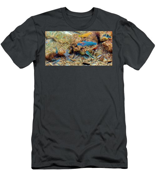 Fish Men's T-Shirt (Slim Fit) by Betty Buller Whitehead