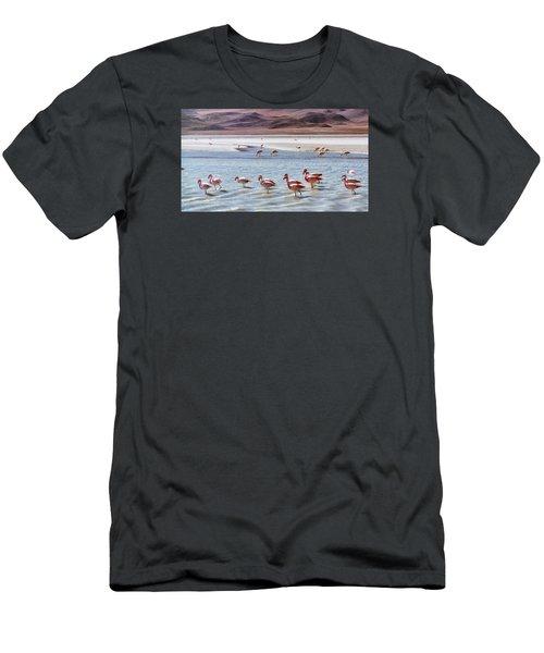 Flamingos Men's T-Shirt (Slim Fit) by Sandy Taylor
