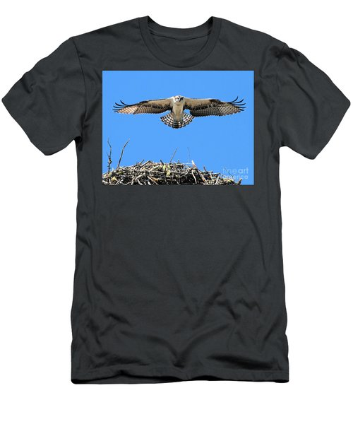 Men's T-Shirt (Athletic Fit) featuring the photograph Flegeling Osprey by Debbie Stahre
