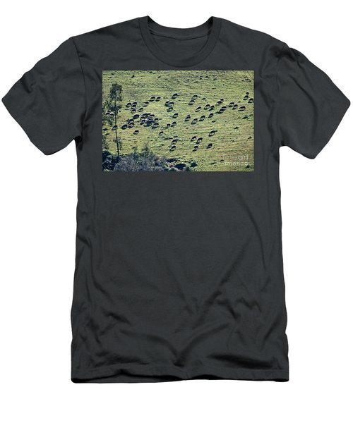 Men's T-Shirt (Slim Fit) featuring the photograph Flock Of Sheep by Bruno Spagnolo