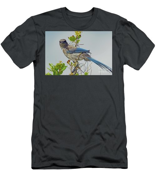 Florida Juvie Scrub Jay Men's T-Shirt (Athletic Fit)
