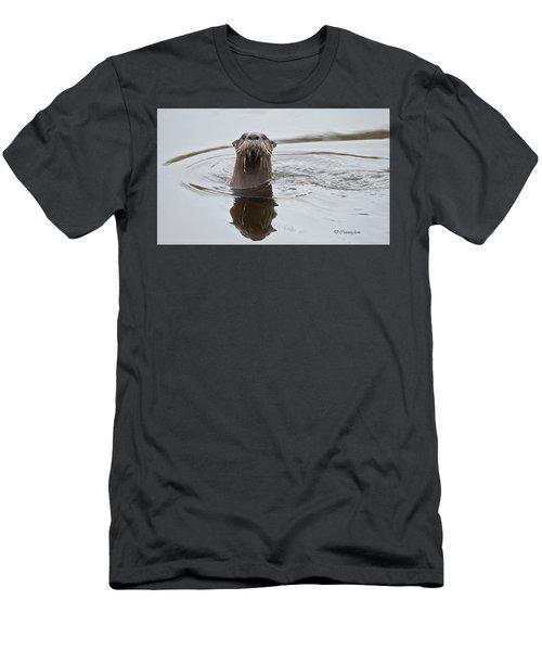 Florida Otter Men's T-Shirt (Athletic Fit)