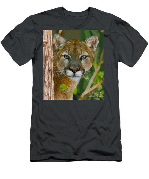 Florida Panther Men's T-Shirt (Athletic Fit)