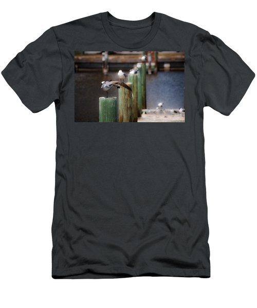 Men's T-Shirt (Slim Fit) featuring the photograph Florida Seagull Playing by Jason Moynihan