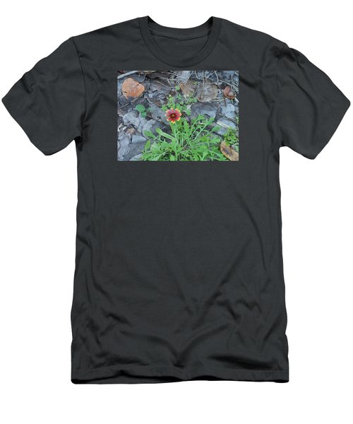 Flower And Lizard Men's T-Shirt (Slim Fit) by Kay Gilley
