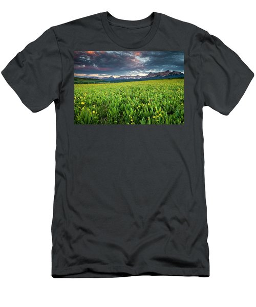 Flower Field And Sneffels Range Men's T-Shirt (Athletic Fit)