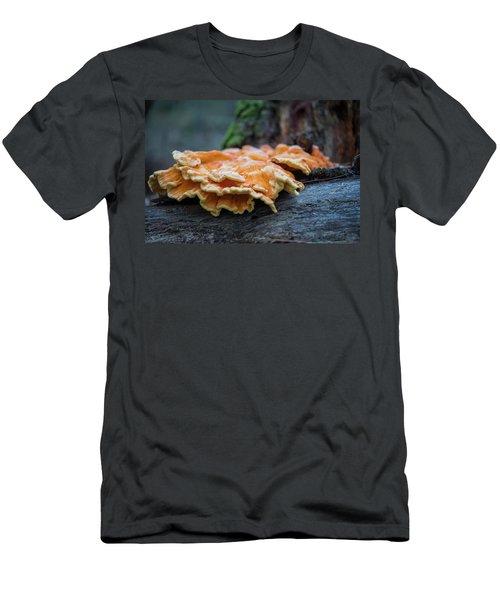 Flowing Fungus Men's T-Shirt (Athletic Fit)