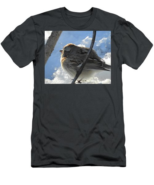 Fluffy Little Bird Men's T-Shirt (Athletic Fit)