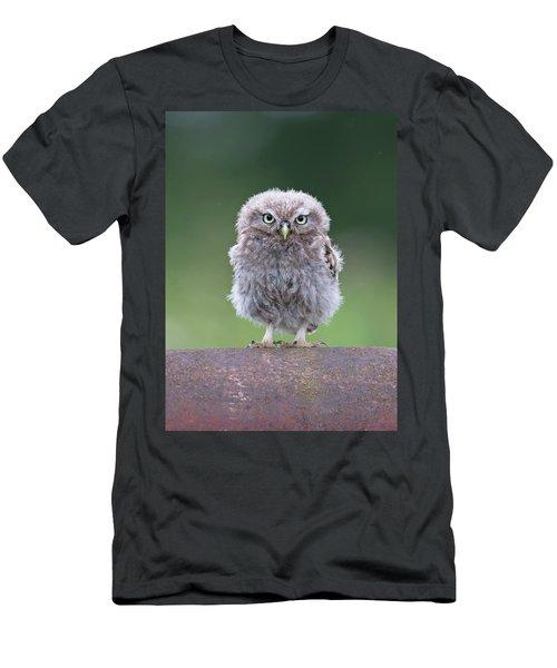 Fluffy Little Owl Owlet Men's T-Shirt (Athletic Fit)