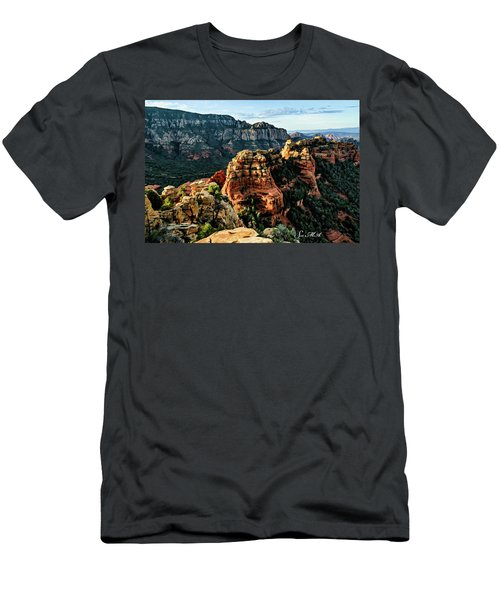 Flying Buttress 04-227 Men's T-Shirt (Athletic Fit)