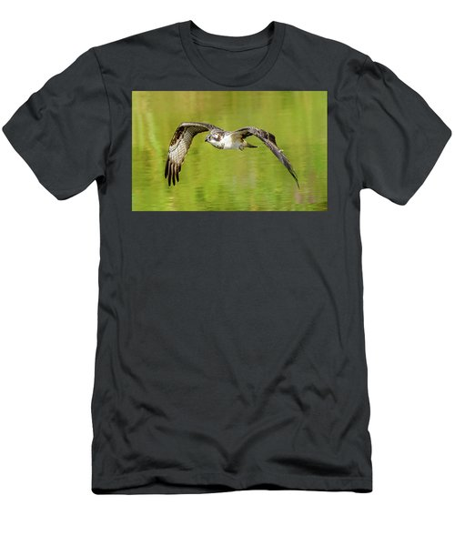 Flying Osprey Men's T-Shirt (Slim Fit) by Jerry Cahill