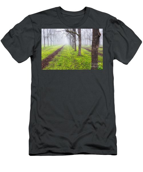 Fog And Orchard Men's T-Shirt (Athletic Fit)