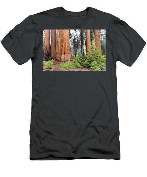 Men's T-Shirt (Athletic Fit) featuring the photograph Forest Growth by Peggy Hughes