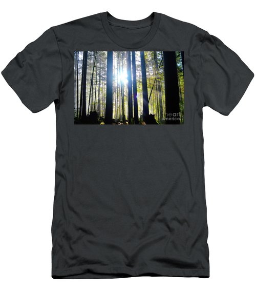 Forest Light Rays Men's T-Shirt (Athletic Fit)