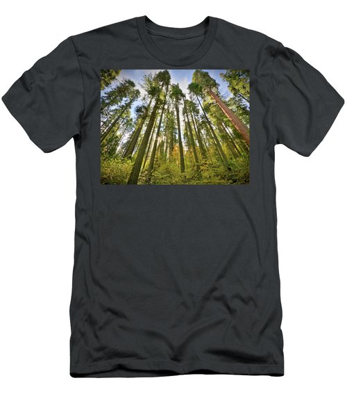 Forest Of Light Men's T-Shirt (Athletic Fit)