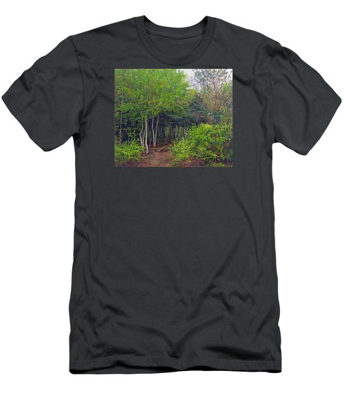 Forest Path Leading Into The Forest Men's T-Shirt (Athletic Fit)