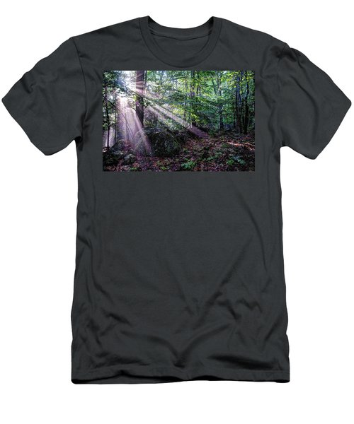 Forest Sunbeams Men's T-Shirt (Athletic Fit)
