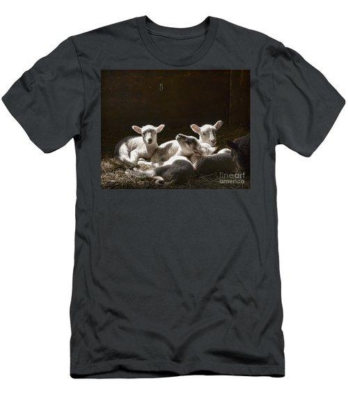 Four Lambs Men's T-Shirt (Athletic Fit)